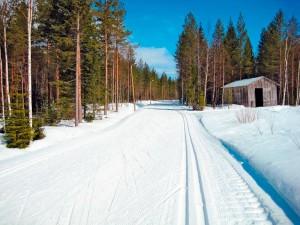 Почему именно лыжи?