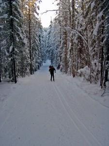 Лыжная трасса в Ухте