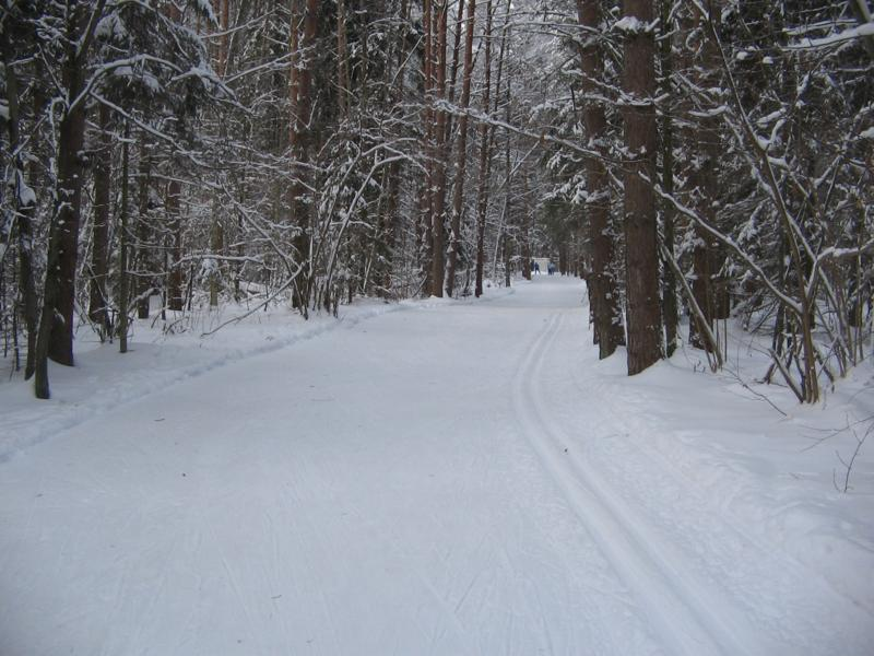 Начало лыжни перед базой Олимпийские зори