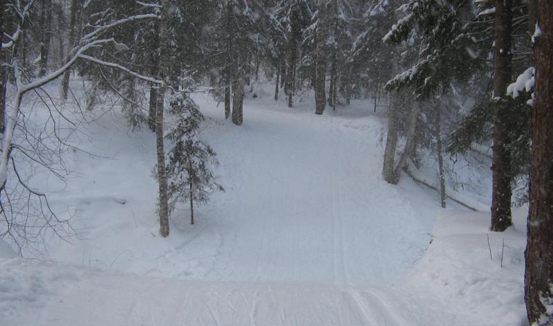 Лыжня в лесном овражке Белкино