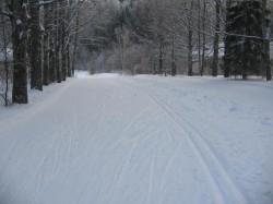 Лыжная трасса Первый спуск в Спутнике