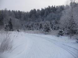 Лыжня в Белкино Разворот на 2 подъем