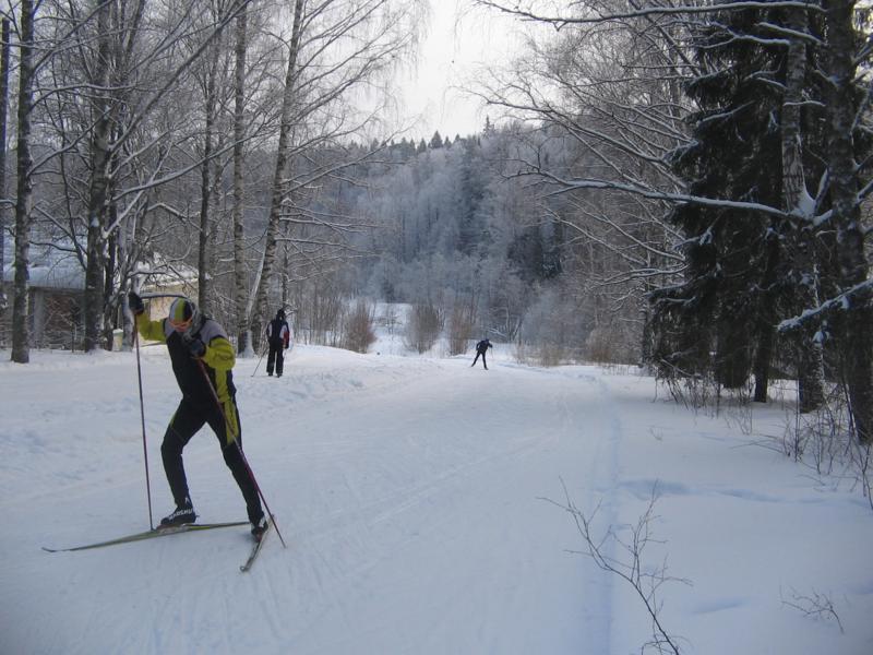 Лыжня в Белкино Тягунок в Спутнике вид с верху