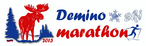 Деминский марафон 2013