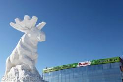 Символ Деминского марафона