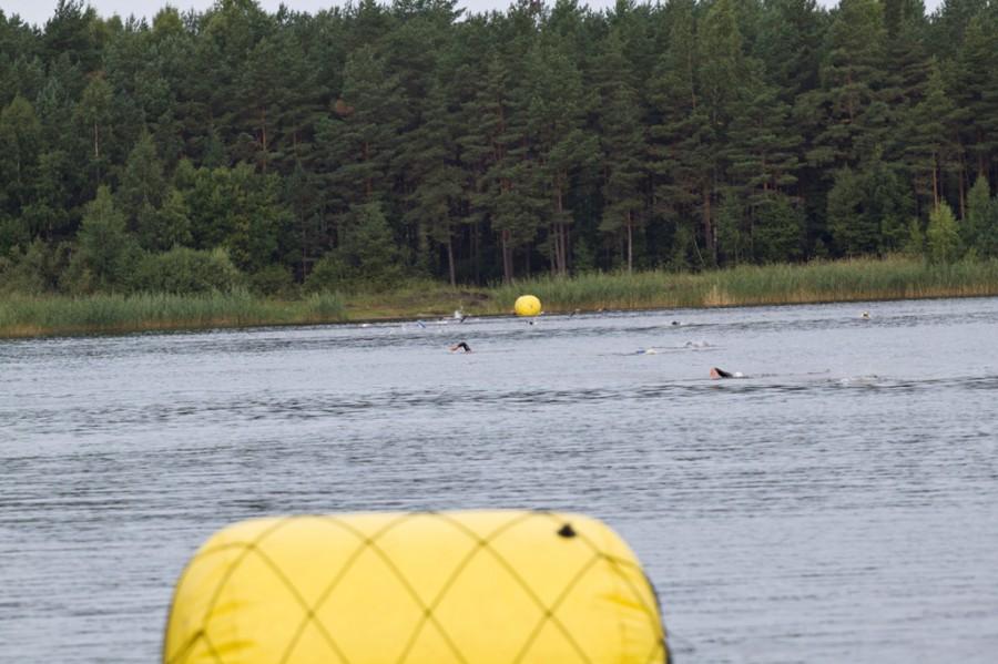 Плыли атлеты довольно быстро, когда вылез первый участник мои часы показывали 1час2минуты с начала соревнований! А это 3,9км..