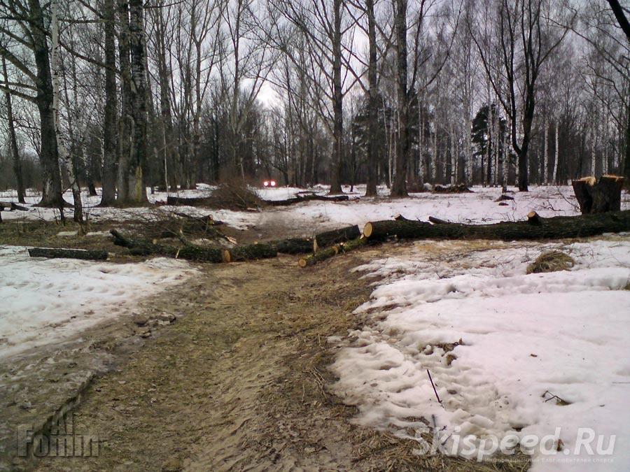Парк отдыха Павловска роща в Брагино. Фото