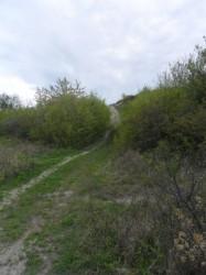 Фото окрестностей в городе Бяла Болгария