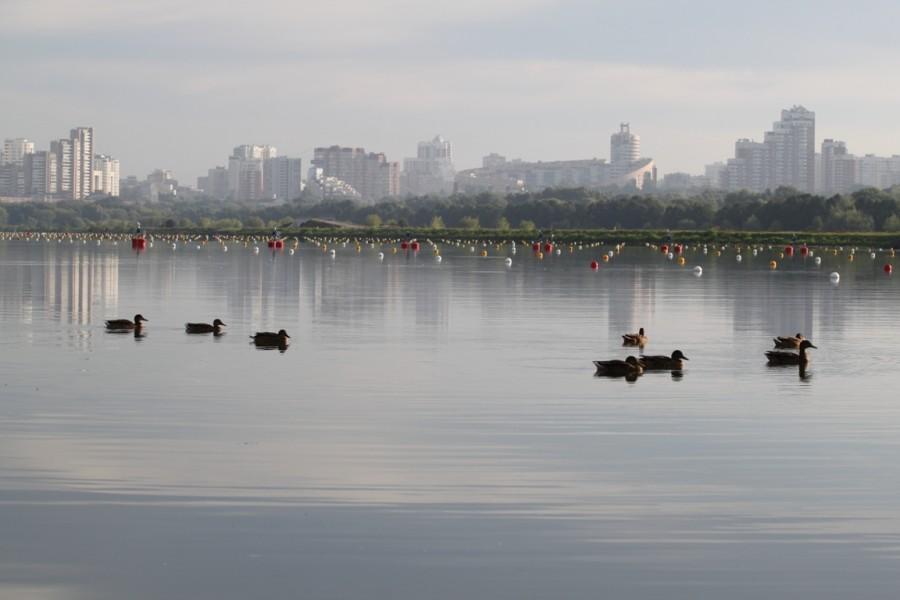 Фоторепортаж с триатлона VestaBank 3Grom в Крылатском