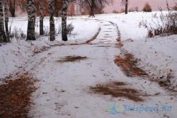 Лыжная трасса в Березовой роще 2014