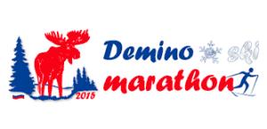 Логотип. Деминский лыжный марафон 2015