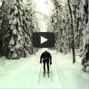 Видео лыжных гонок