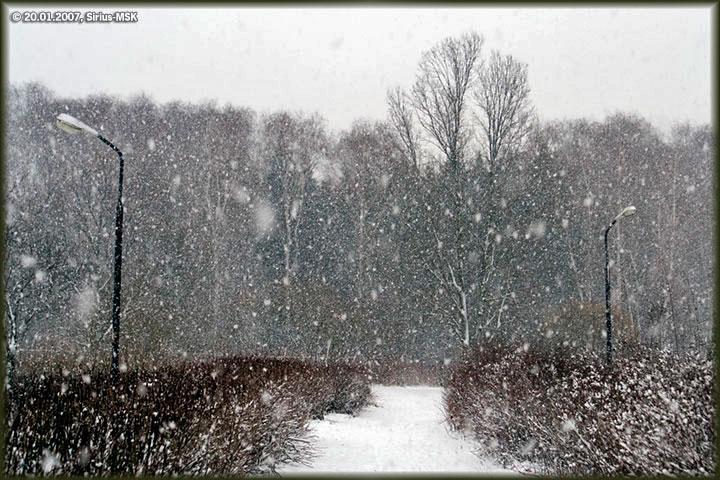 Первый день зимы со снегом