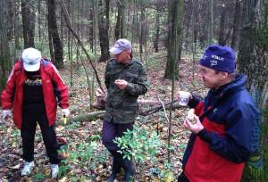 Фото - Субботник на кругу в михайловском лесу, октябрь 2015