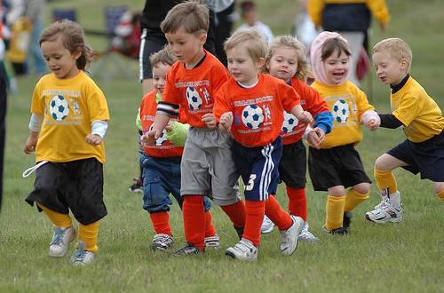 Фото - Слияния спортивных школ Ярославля