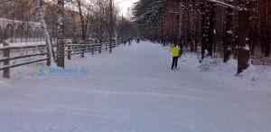Фото - Лыжная трасса в Яковлевском бору Ярославля