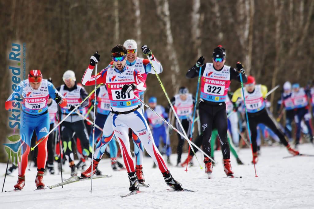 Фото - Фомина Алексея, Деминский лыжный марафон 2016