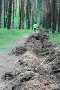 Фото - Тренировочная трасса в Яковлевском бору, испорчена