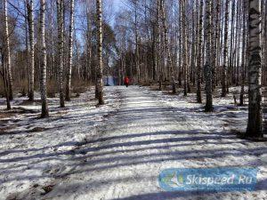 Фото парка отдыха - Тренировки весной 2017 в Берёзовой роще г. Ярославля (Брагино)