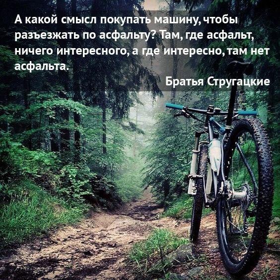 Фото кросс-кантри велосипеда - Тренировочная трасса в Михайловском лесу, Ярославский р-н