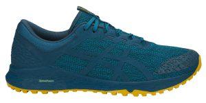 Фото обуви для бега - T828N Кроссовки ASICS ALPINE XT