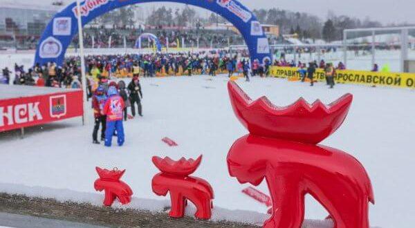 Фото сувенирных лосей - Открылась регистрация на гонки 5 км и 10 км Дёминского лыжного марафона 2019